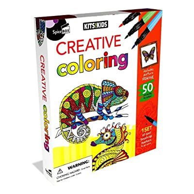 SpiceBox Creative Coloring Kit: Toys & Games