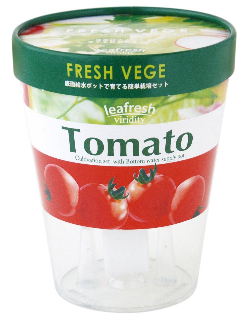 聖新陶芸 フレッシュ ベジ ミニトマト