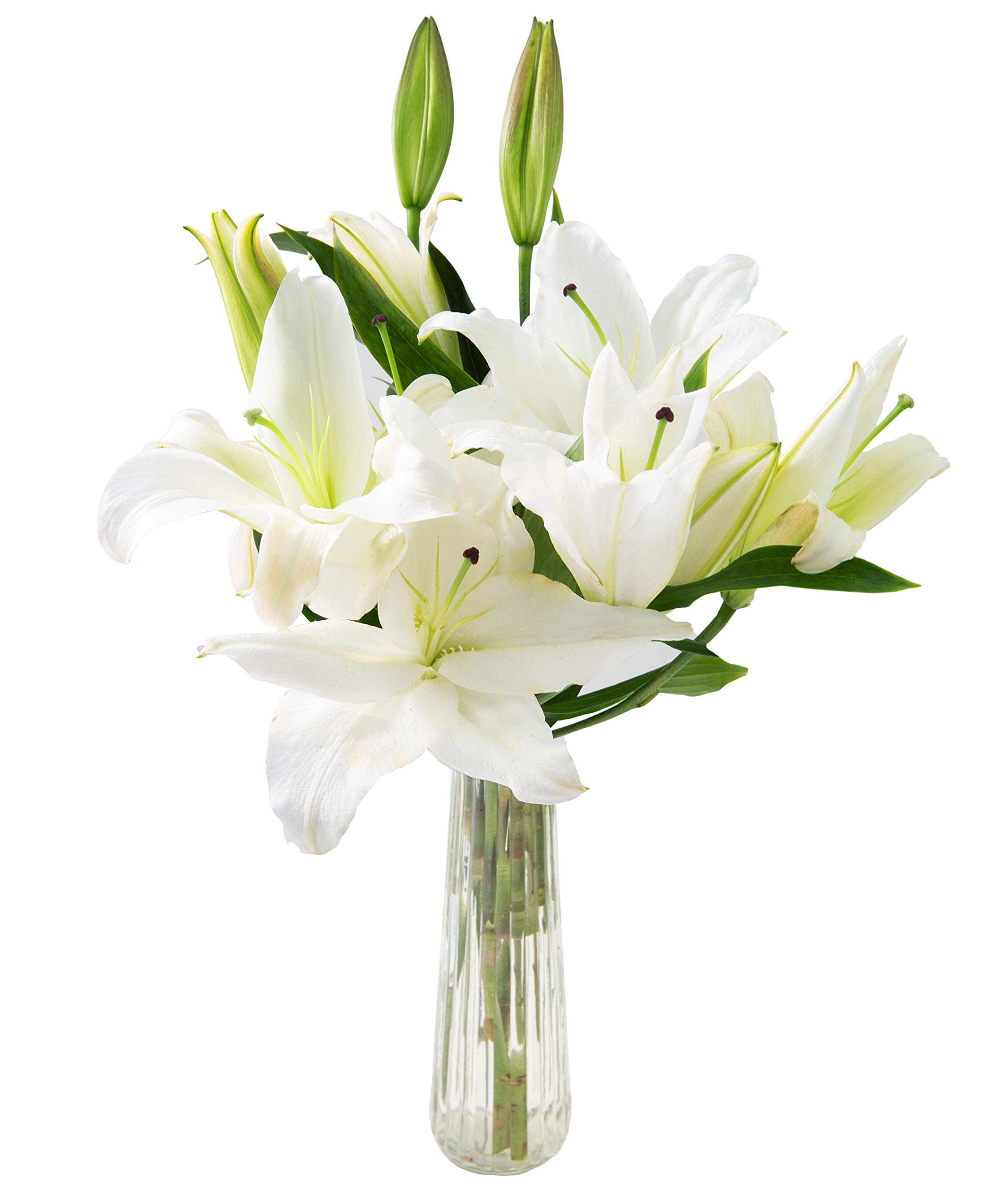 KaBloom Mother's Day Collection: Pure Love Bouquet of Fresh White Lilies with Vase, 5 count