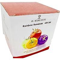 CRESCI LA TUA PIANTA BONSAI DI POMODORO ARCOBALENO - Abbiamo selezionato una speciale serie di pomodori arcobaleno tutti di colori diversi, che potrete coltivare voi stessi. In questa scatola troverete tutto ciò di cui avete bisogno per iniziare a coltivare i vostri Pomodori Arcobaleno in piu' i consigli per la semina e la coltivazione di questa speciale pianta di pomodoro.