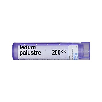 More Than 120 Homeopaths Trying To Cure >> Amazon Com Boiron Ledum Palustre 200ck 80 Pellets Homeopathic