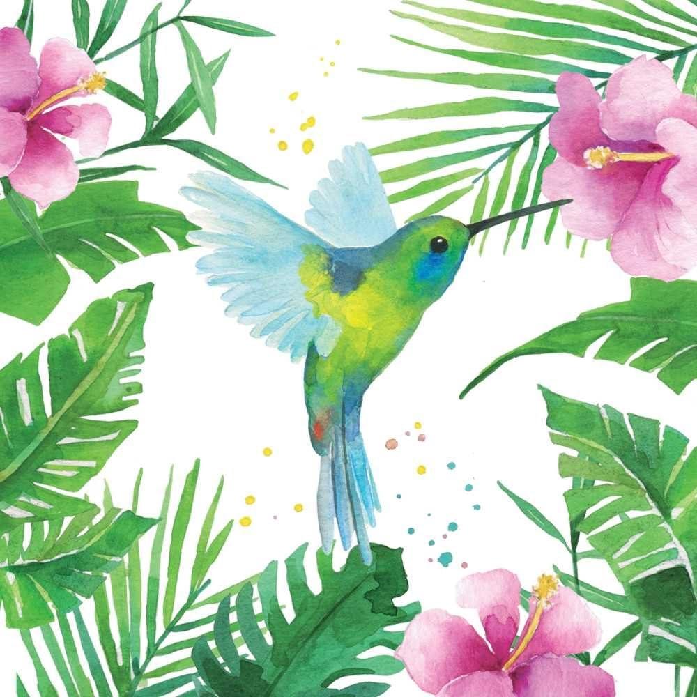 Paperproducts Design 1252706 Beverage Napkin, Tropical Hummingbird
