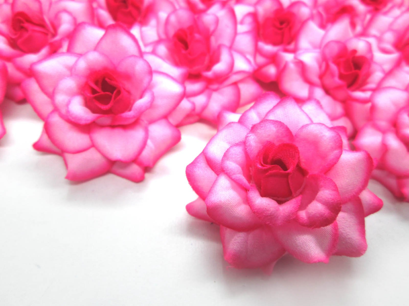 24-Silk-Hot-Pink-Edge-Roses-Flower-Head-175-Artificial-Flowers-Heads-Fabric-Floral-Supplies-Wholesale-Lot-for-Wedding-Flowers-Accessories-Make-Bridal-Hair-Clips-Headbands-Dress