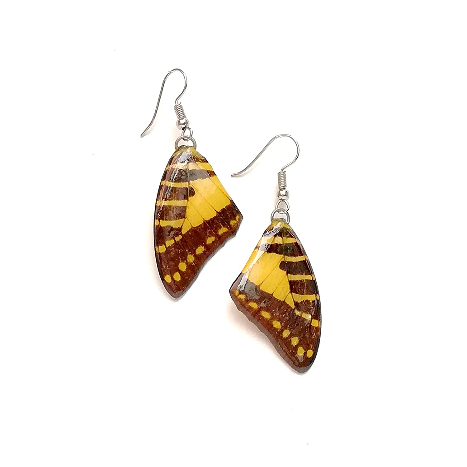 Real Painted Butterfly Wing Drop Dangle Earrings Resin Coated Handmade Jewelry