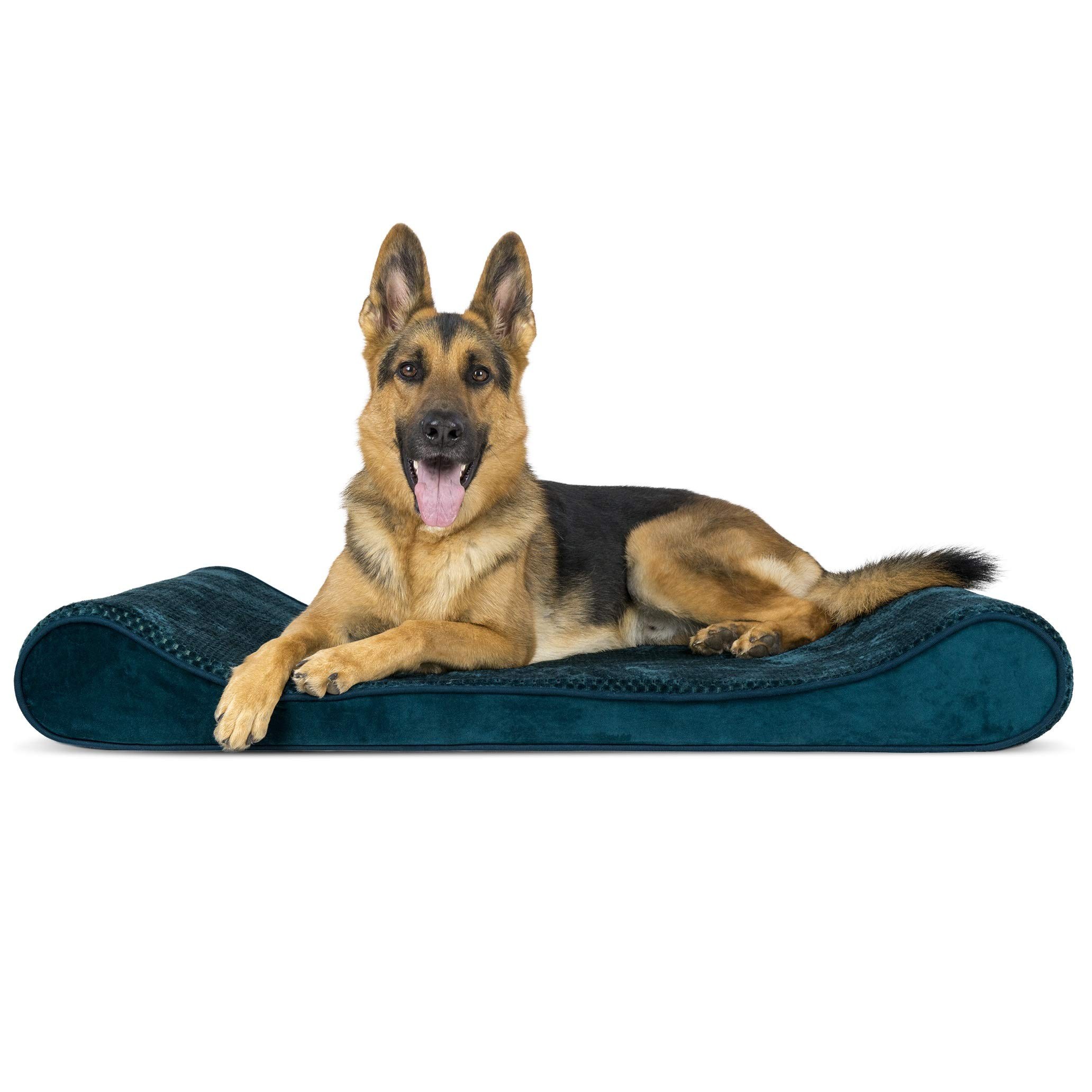 Furhaven Pet Dog Bed   Orthopedic Minky Plush & Velvet Ergonomic Luxe Lounger Cradle Mattress Contour Pet Bed w/ Removable Cover for Dogs & Cats, Spruce Blue, Jumbo by Furhaven