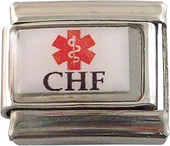 Diabetic 2 Medical Laser Alert Italian Charm Bracelet Photo Free Wallet ID Card