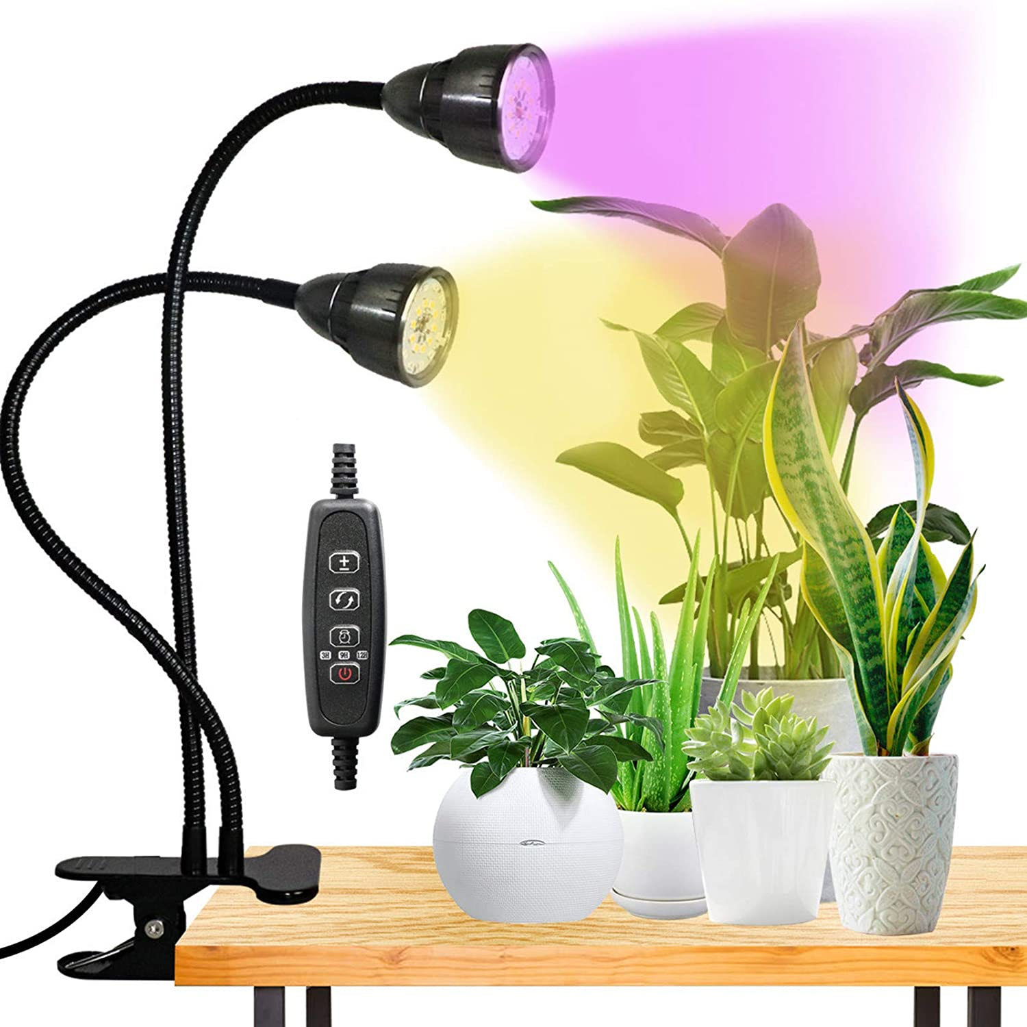 LED Grow Light for Indoor Plant,360° Gooseneck Dual Head Clip-on Plant Lights for Seedlings Succulents Micro-Greens,Timer Function (3 Modes & 10-Level Brightness): Home Improvement