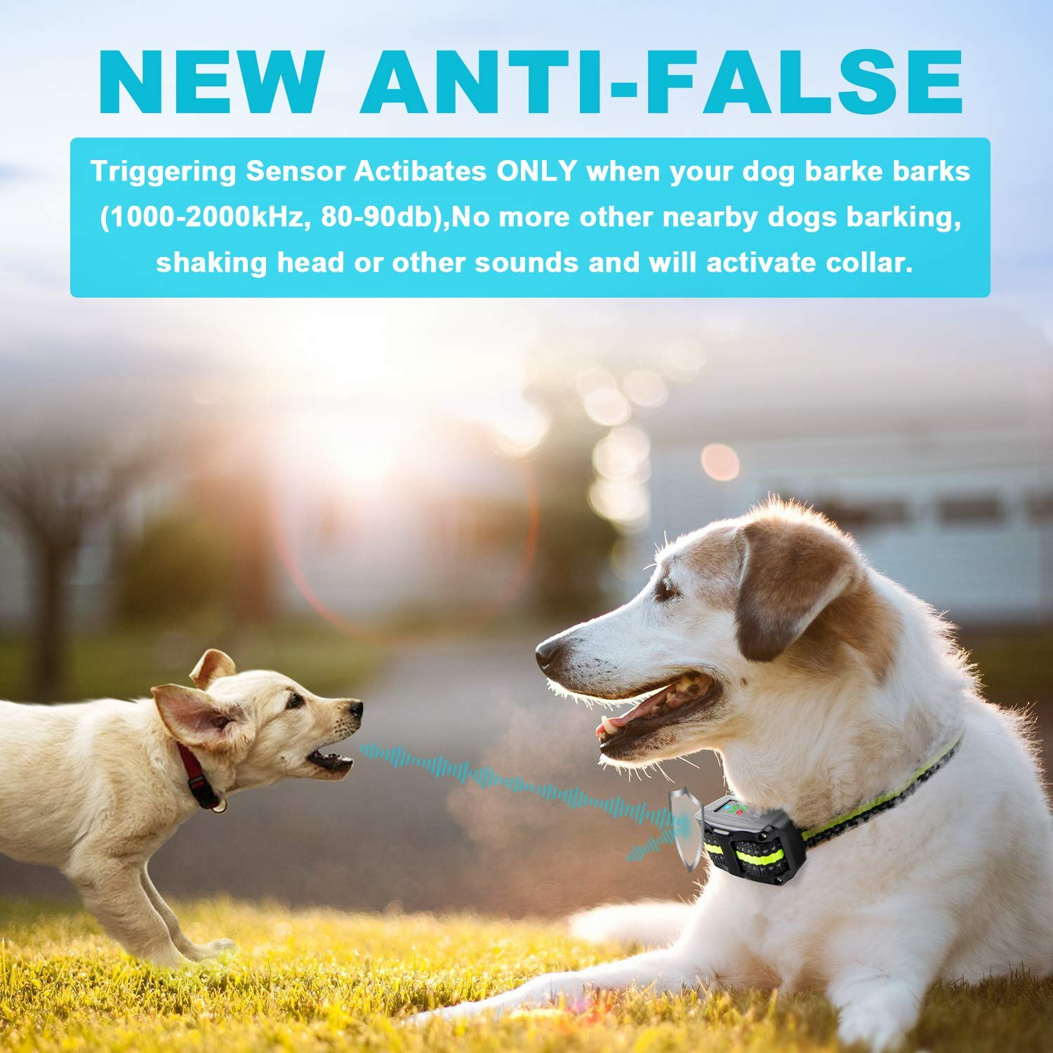 Bark Collar 2019 Upgrade Version No Bark Collar Rechargeable Anti bark Collar with Beep Vibration and No Harm Shock Smart Detection Module Bark collar for Small Medium Large Dog by Authen (Image #2)