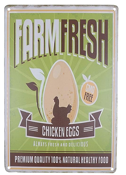 SKYC Farm - Cartel de Metal con diseño de Huevos de Pollo ...