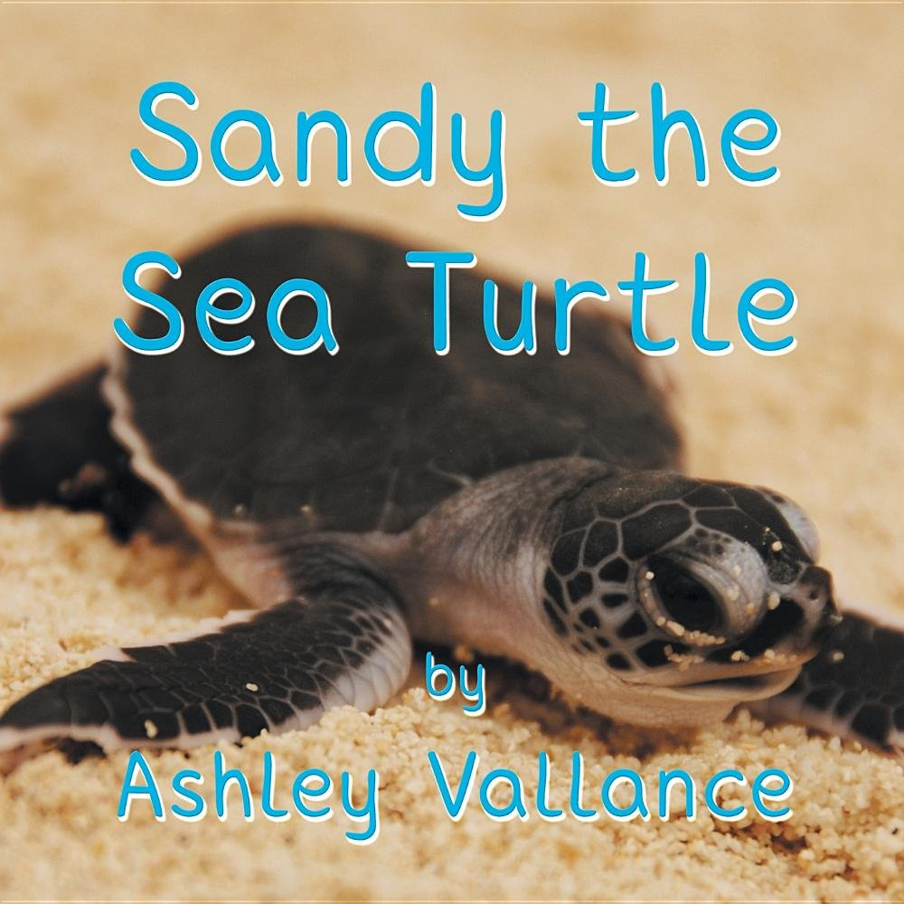 Sandy the Sea Turtle Text fb2 ebook