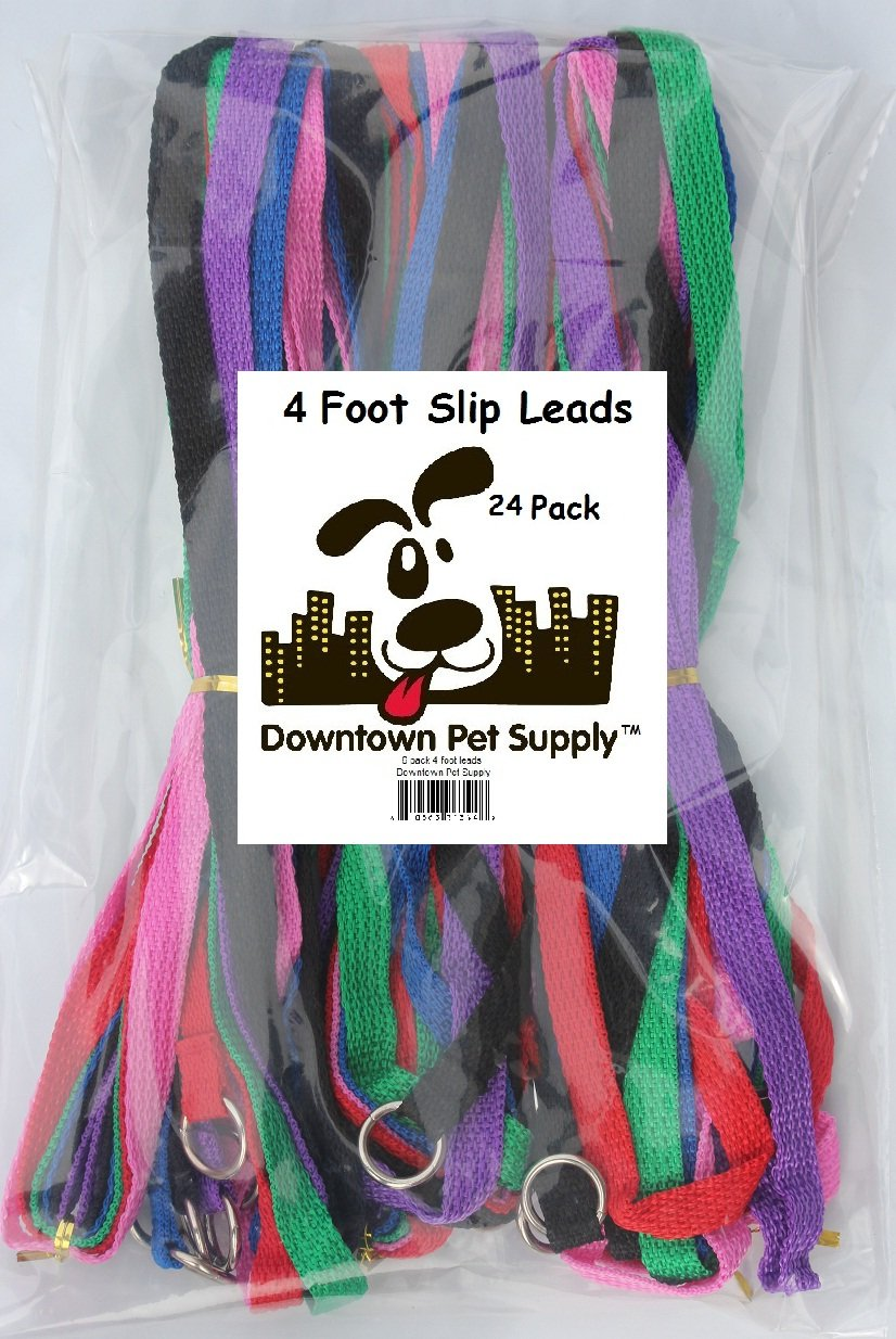 Downtown Pet Supply Slip Leads, Kennel Leads with O Ring (24 pack) for Dog Pet Animal Control Grooming, Shelter, Rescues, Vet, Veterinarian, Doggy Daycare - 4 foot Length x 1/2 inch Width