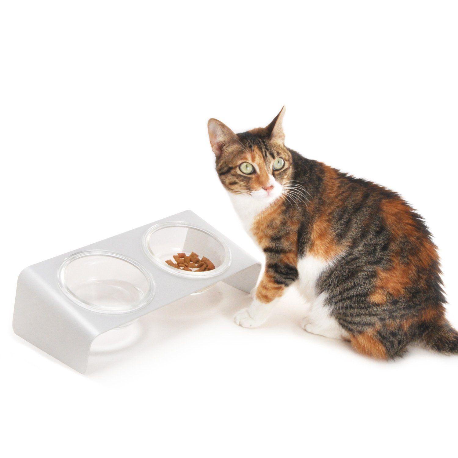 bowls with elevated dp pet com feeder cat amazon supplies glass
