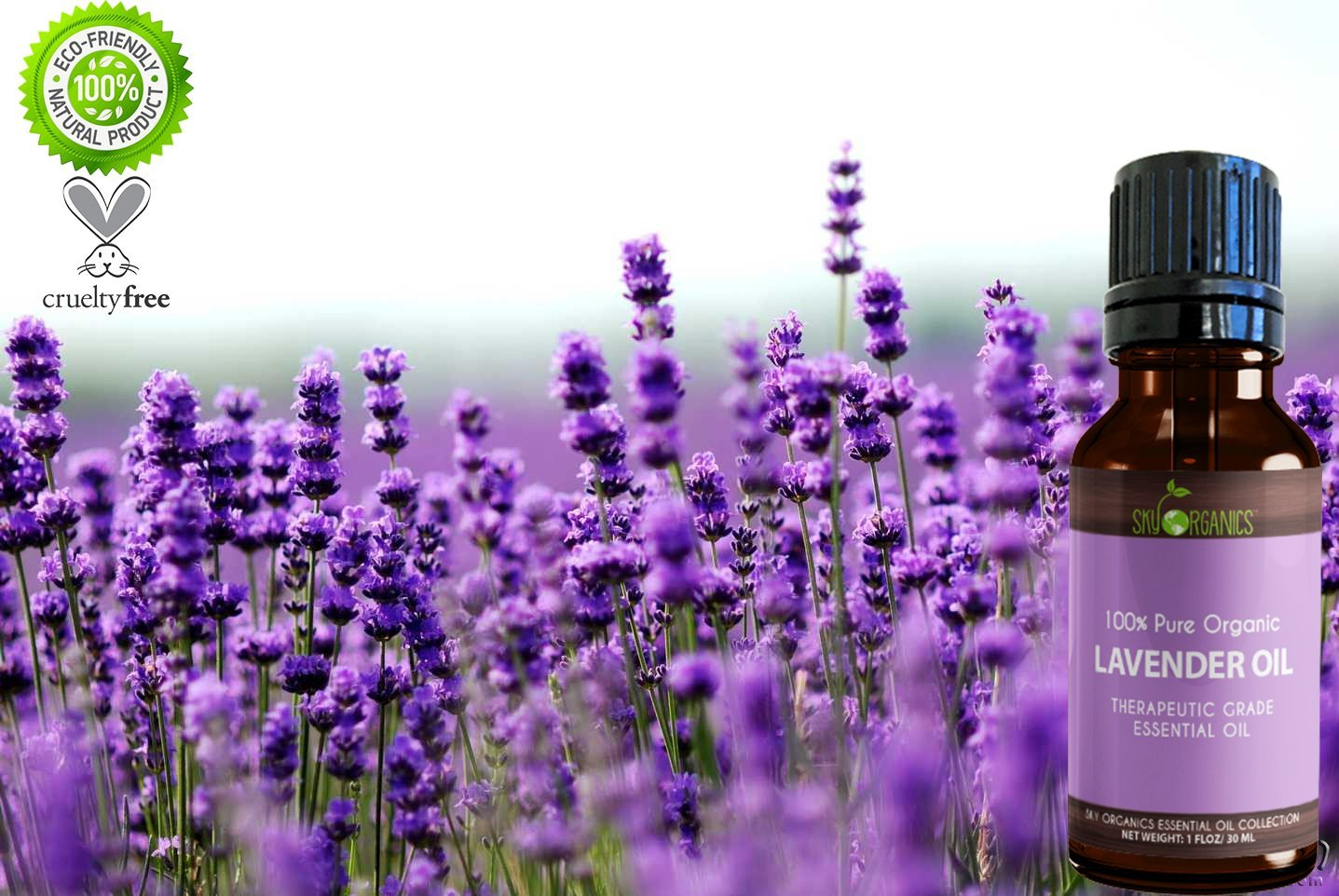Best Lavender Essential Oil By Sky Organics-100% Organic, Pure Therapeutic French Lavender Oil For Diffuser, Aromatherapy, Headache, Pain, Meditation, Anxiety, Sleep-Perfect For Candles & Massage 1oz by Sky Organics (Image #3)