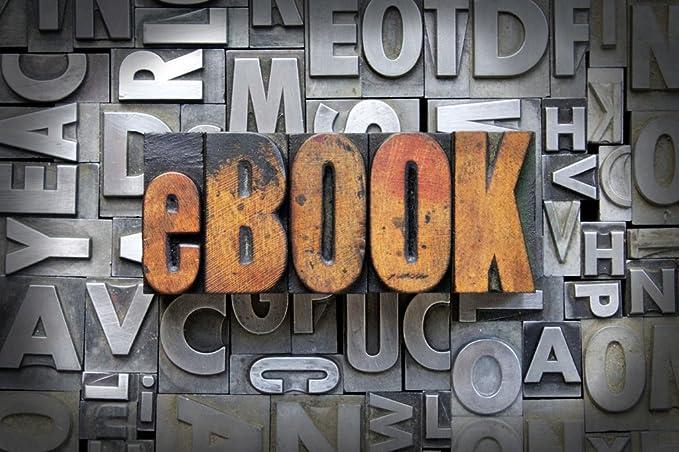 ANVAL Funda para EBOOK PAPYRE 622: Amazon.es: Electrónica