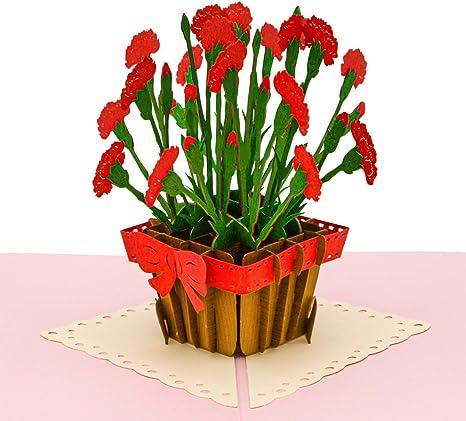 Amazon.com: Paper Love Carnation Flowers - Tarjeta de ...