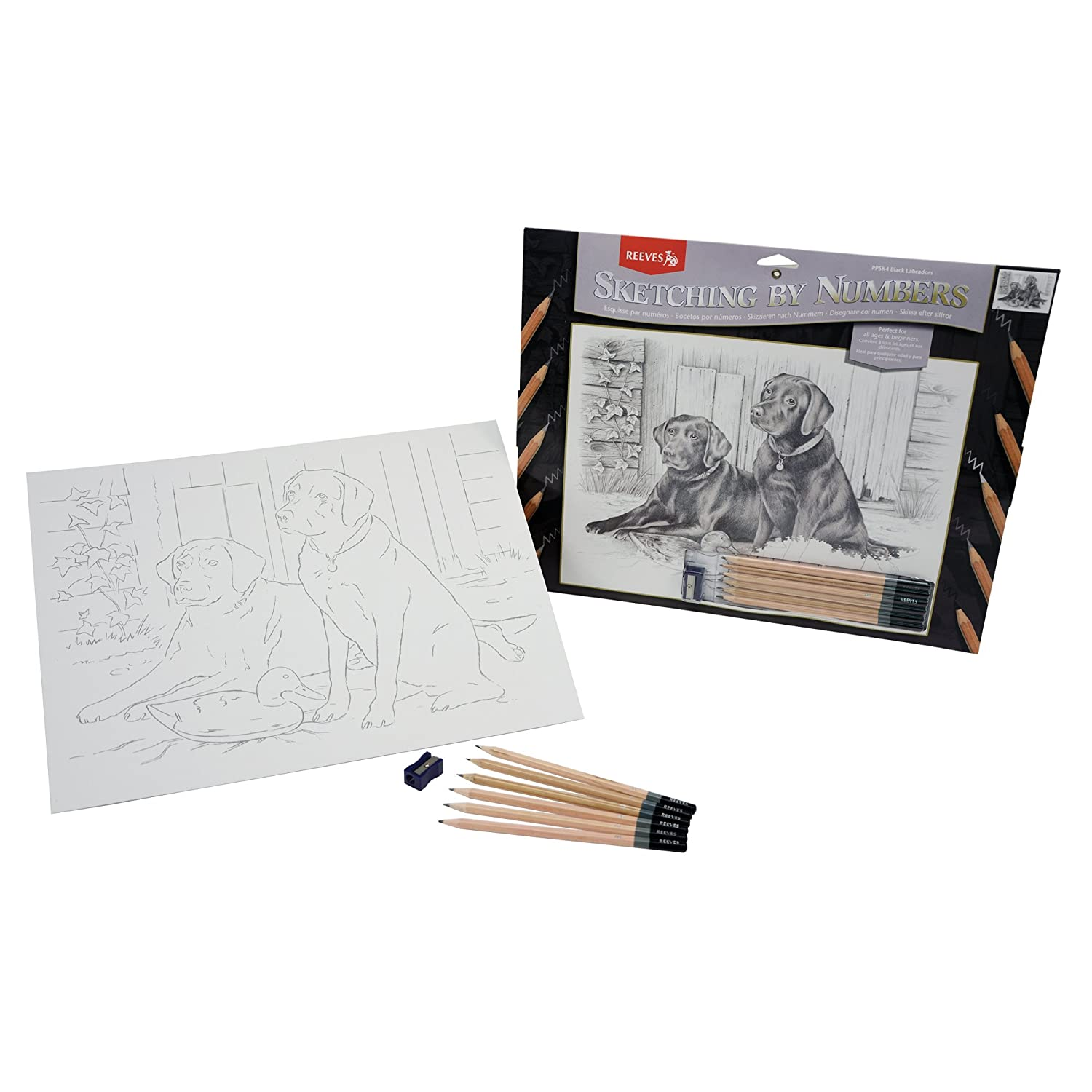 Reeves 11-1//2-Inch by 15-1//2-Inch Sketching by Number Kit Black Labrador