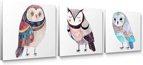 Niwo Art-Cute Owl Combo