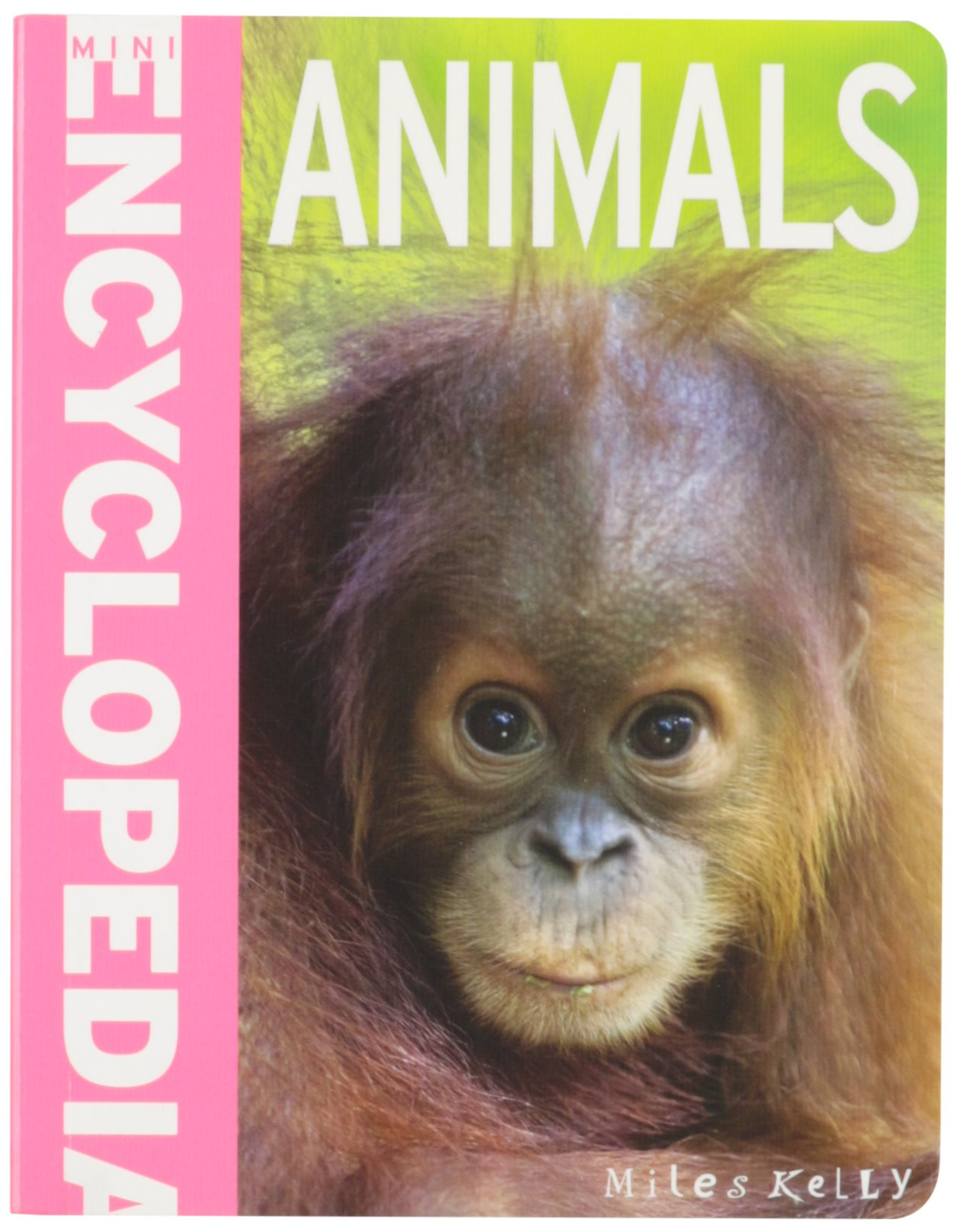 Mini Encyclopedia - Animals (Mini Encyclopedias)