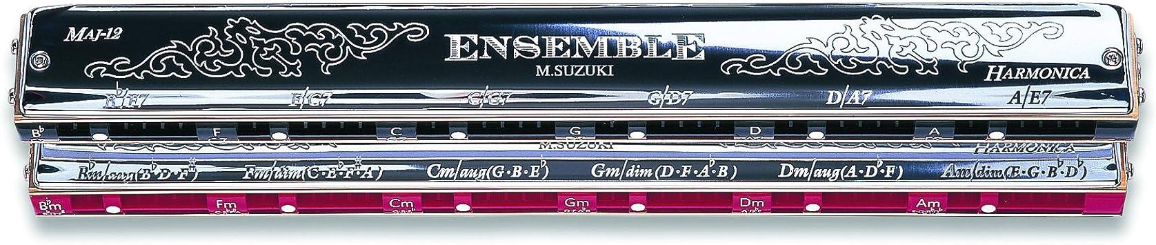 Suzuki SCH-24 Acorde Harmonika: Amazon.es: Instrumentos musicales