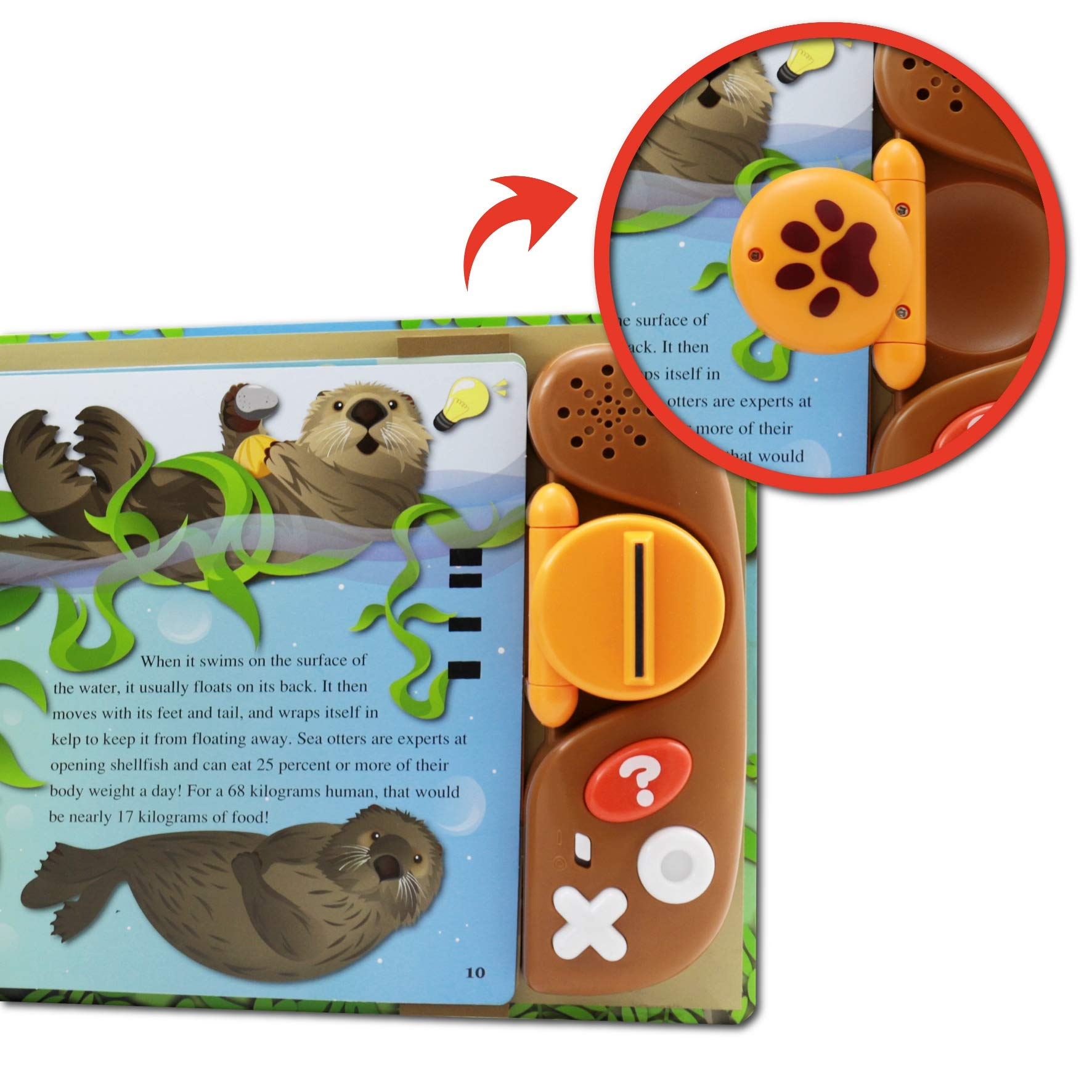 BEST LEARNING Book Reader Animal Kingdom - Educational Talking Sound Toy to Learn About Animals with Quiz Games for Kids Ages 3 to 8 Years Old by BEST LEARNING (Image #5)