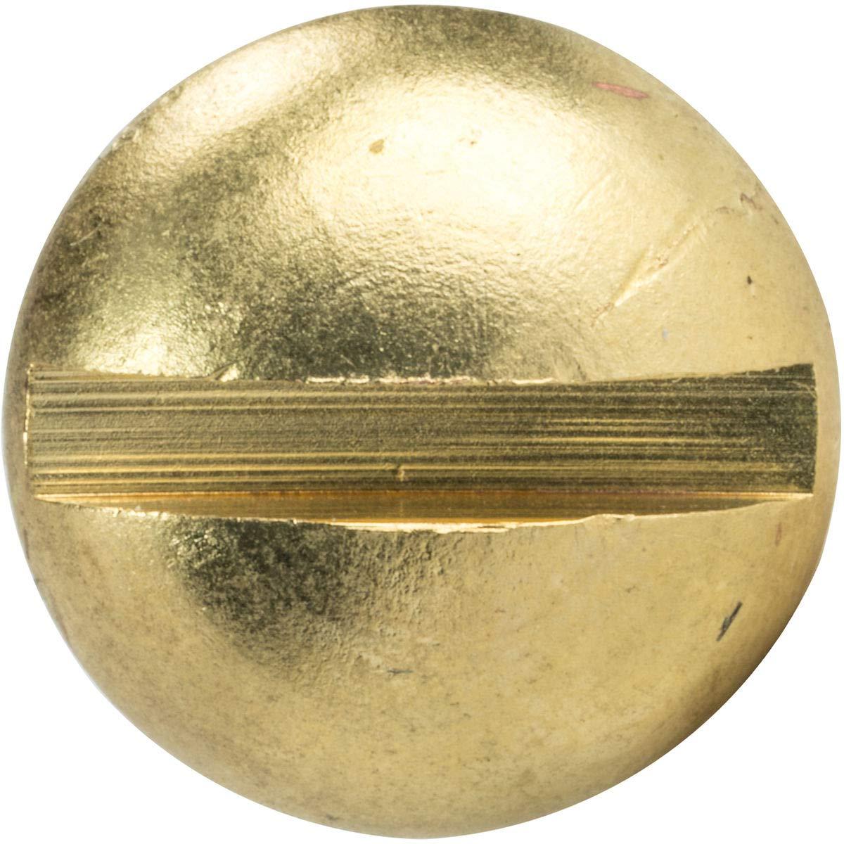 #2 x 3//8 Brass Round Head Wood Screws Slotted Drive Qty 100