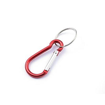 Mousqueton Porte-Clé (Carabiner Keyring) (Rouge (Red))