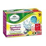 L'Angelica - Tisana a Freddo Sgonfiante Digestiva, Gusto Fragola e Limone - 2 confezioni da 15 filtri [30 filtri, 100 g]