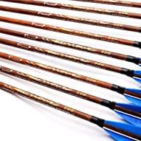 12 x 31 Carbon Arrows Feather Compound Recurve Bow Hunting Target Spine 500