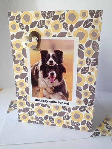 Amazon Sheepdog Collie Dog Greetings Happy Birthday Dog Card