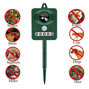 Ahuyentador de Gatos wuudi Solar por ultrasonido contra funciona con batería y flash - Impermeable - Ahuyentador perros, martas (, ahuyentar, repelente de ...