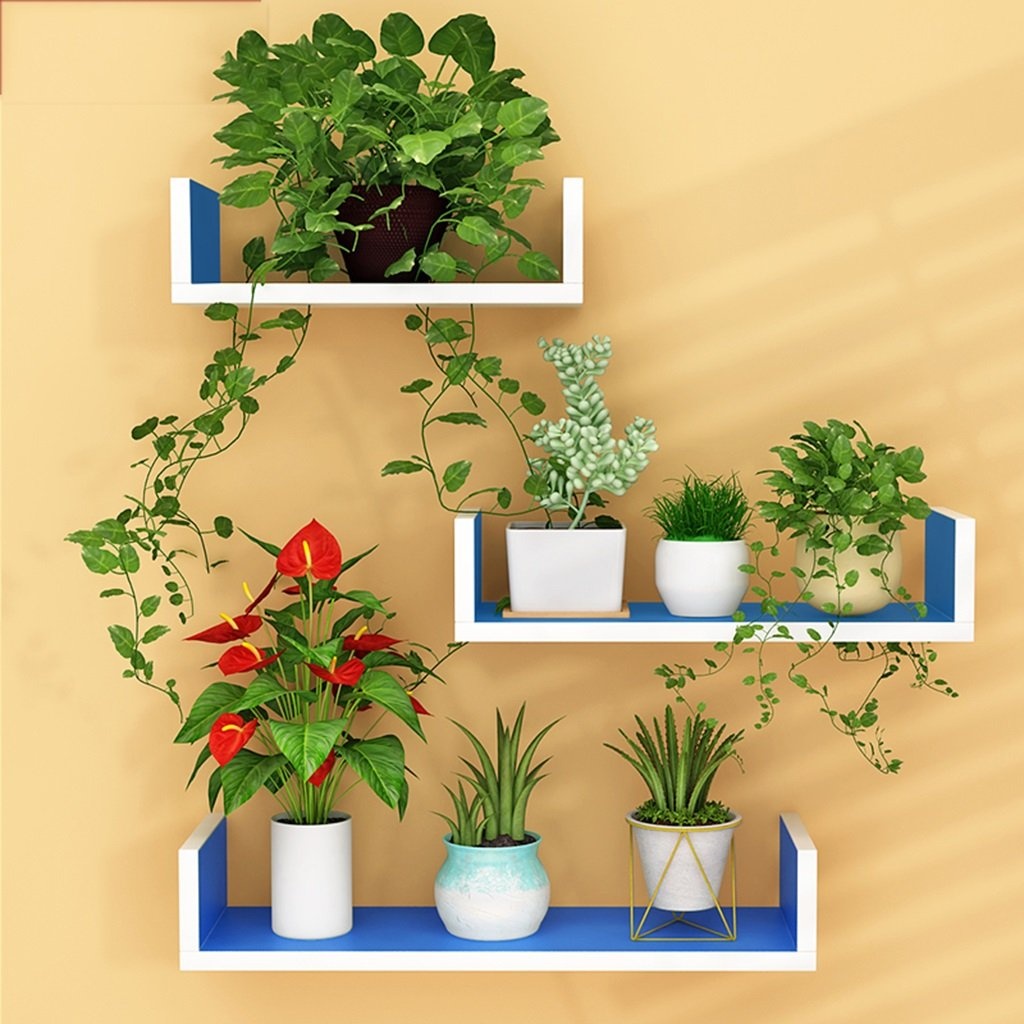 CSQ Indoor Wall Hangings, Pallet Shelf Bedroom Living Room Restaurant Kitchen Decoration Chlorophytum Potted Plants Flower Shelf
