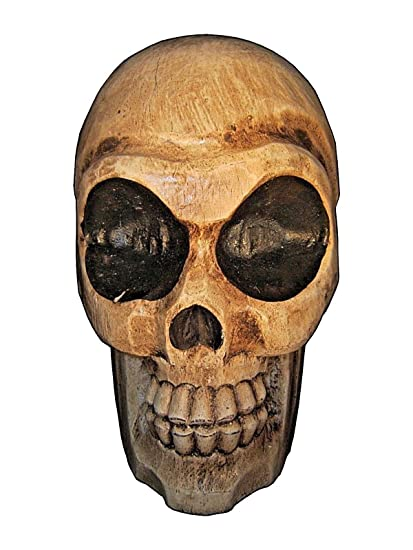 Amazon hand carved tropical wood skull inch everything else