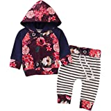 puseky Newborn Baby Girl Long Sleeve Floral Hoodie Sweatshirt Tops+ Pant Clothes Outfits Set