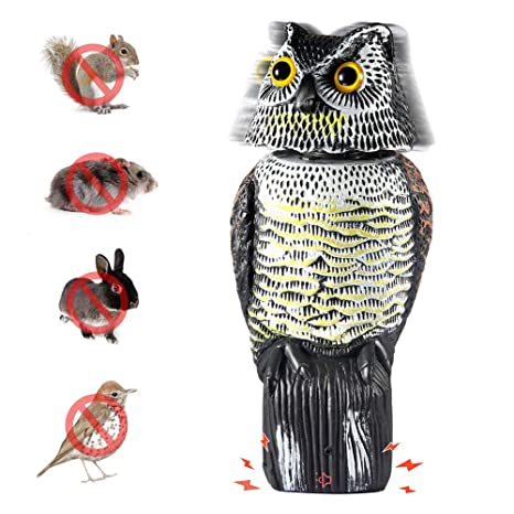 Asdomo Bird Repellent Owl Decoy with Rotating Head Scarecrow