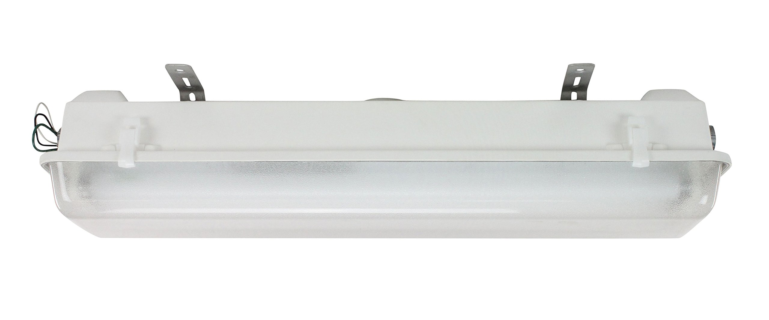 Class I, Div. II Fluorescent Light for Corrosion Resistant Requirements - 2' Lamps - Low Voltage(-24 Volt)