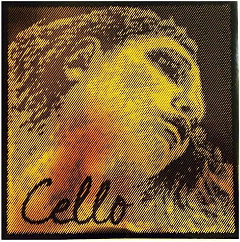 Pirastro Evah Pirazzi Gold 4/4 Cello D String - Medium Gauge