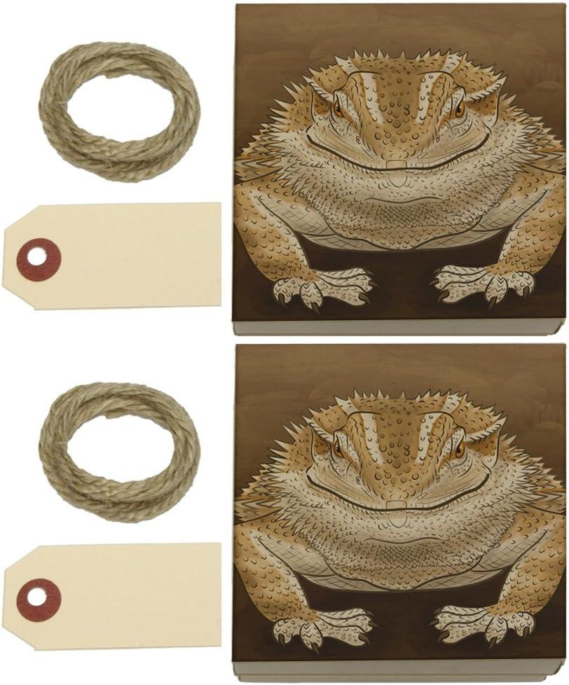 Devious dragón Barbudo Kraft cajas de regalo Set de 2: Amazon.es: Juguetes y juegos