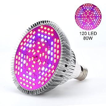 Luz de planta, 1 pieza, 30W, 50W, 80