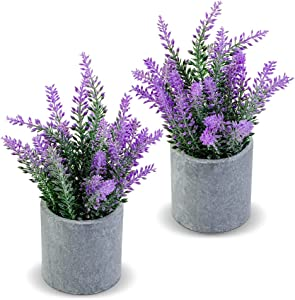 CADNLY Fake Lavender Plant Potted - Lavender Artificial Flowers in Grey Pot - Modern Farmhouse Flower Decor - Faux Lavender Room Decor - Purple Lavender Decor for Bathroom Bedroom Kitchen Office