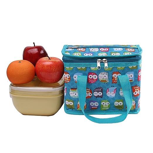 Bolsa para el almuerzo con aislamiento, de TEAMOOK, con asa, capacidad para 6 latas