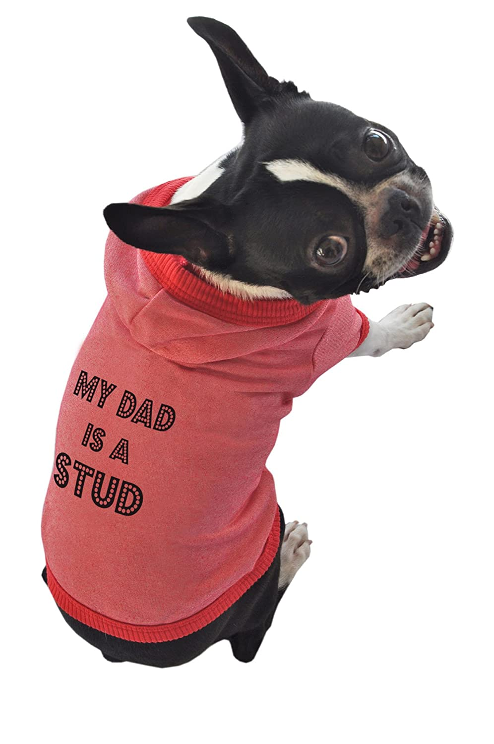 Ruff Ruff and Meow Dog Hoodie, My Dad is a Stud, Red, Large