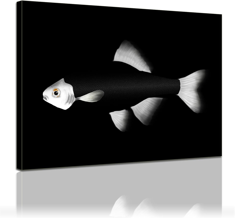 Bilderdepot24 Bastidor Imagen - Cuadros en Lienzo Pescado (Negro Blanco) 40x30cm - Made in Germany!: Amazon.es: Hogar