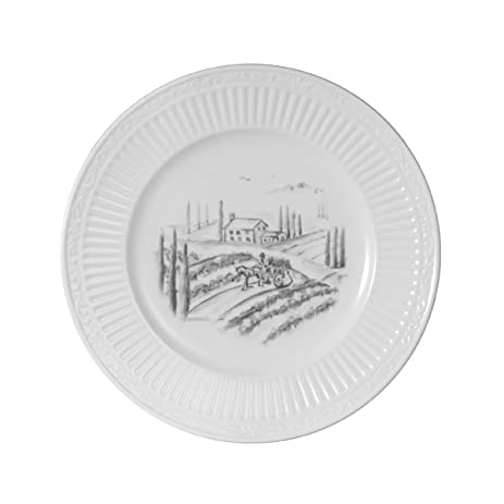 Mikasa Italian Countryside Tuscany Harvest Accent Plate 8.5Inch  sc 1 st  Amazon.com : italian countryside dinner plates - pezcame.com
