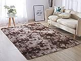ACTCUT Super Soft Indoor Modern Shag Area Silky