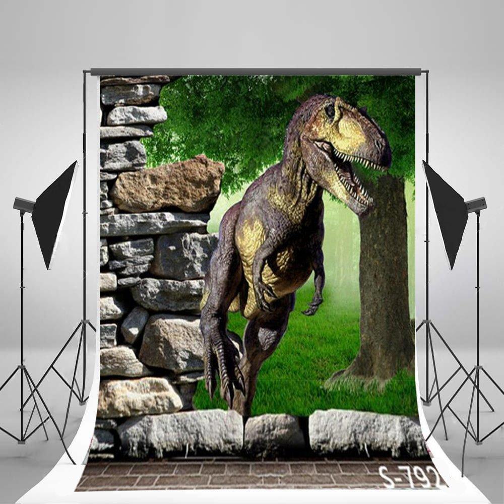 Laeacco 3x5ft Thin Vinyl Photography Backdrop the 3D Cartoon Dinosaur and Wall Scene 1*1.5m Photo Background Studio Props