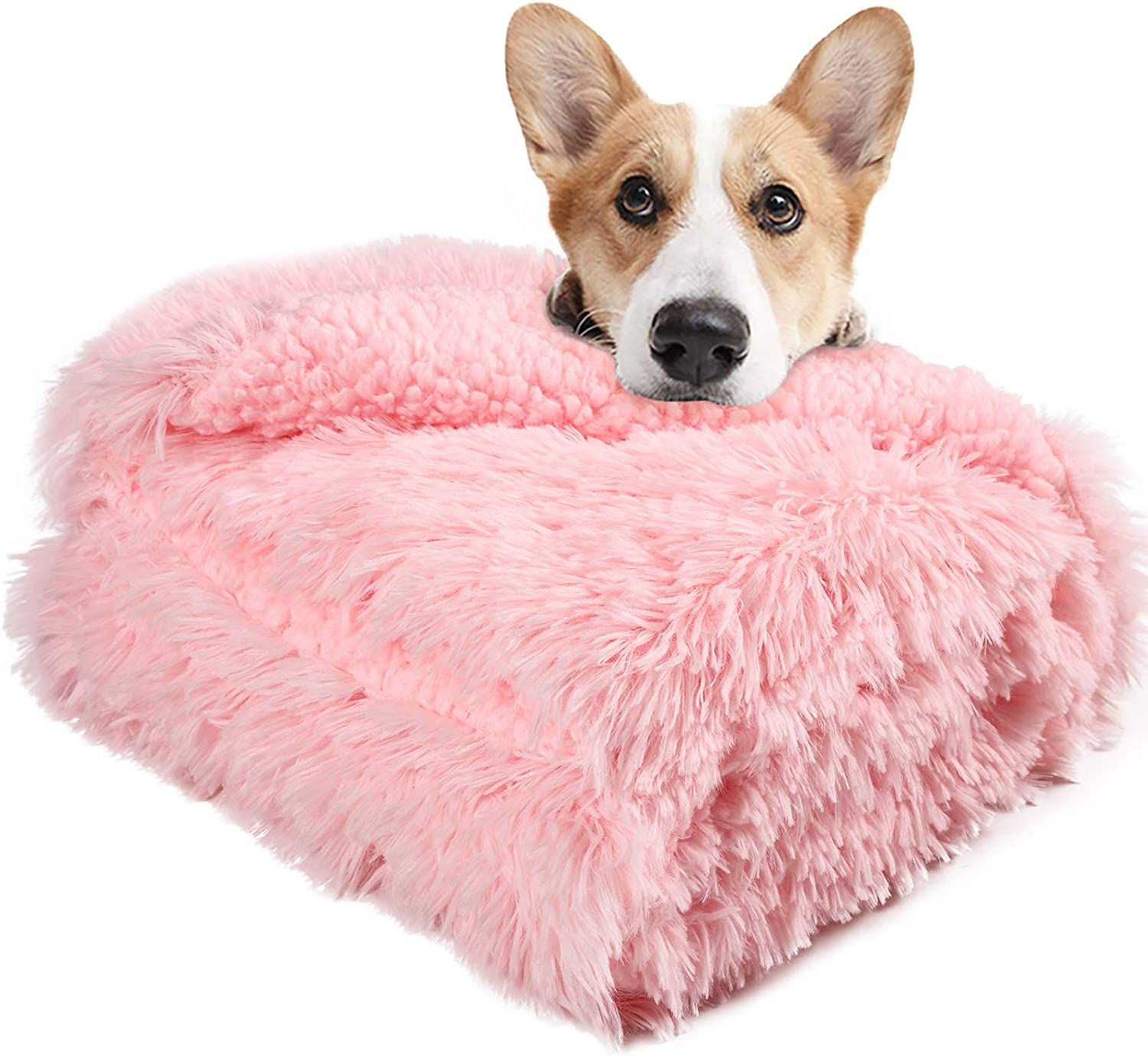 LOCHAS Luxury Velvet Fluffy Dog Blanket, Extra Soft and Warm Sherpa Fleece Pet Blankets for Dogs Cats, Plush Furry Faux Fur Puppy Throw Cover