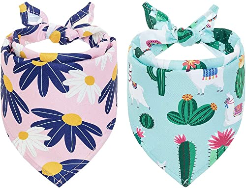 PUPTECK Dog Floral Bandanas with Cute Pattern - 2 Pack Cactus Daisy