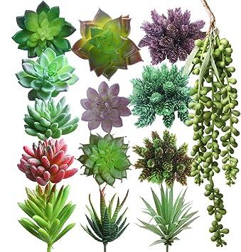 Lasimonne 14 Pcs Faux Succulent Assorted -Fake Succulent Plants,Unpotted  Fake Plants for Decoration,Artificial Succulents Picks, Fake Succulent ...