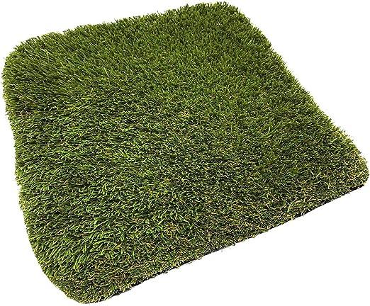 Jardin202 Rollo: 2x10 Metros - Césped Artificial Gandía 40mm - Rollos: Amazon.es: Jardín