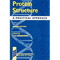 Protein Structure: A Practical Approach (Practical Approach Series)